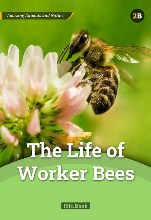 The Life of Worker Bees