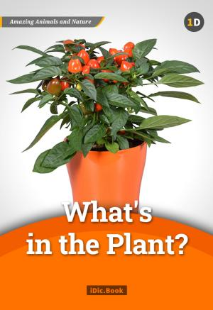 What\'s In the Plant?