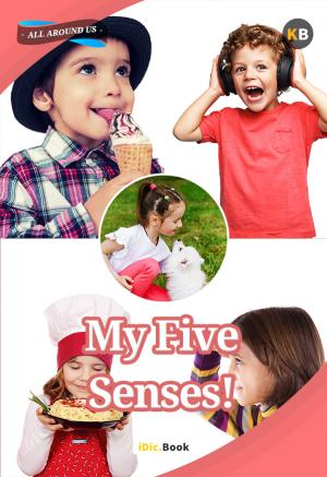My Five Senses!