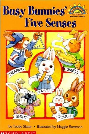 Busy Bunnies Five Senses