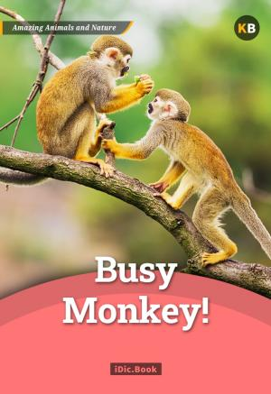 Busy Monkey!