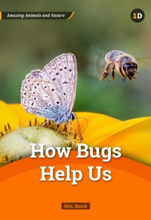 How Bugs Help Us