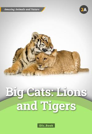 Big Cats: Lions and Tigers