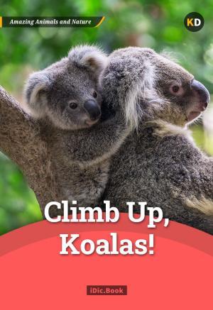 Climb up, Koalas!
