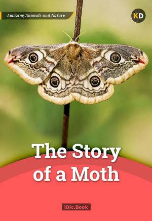 The Story of a Moth