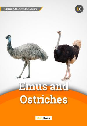 Emus and Ostriches