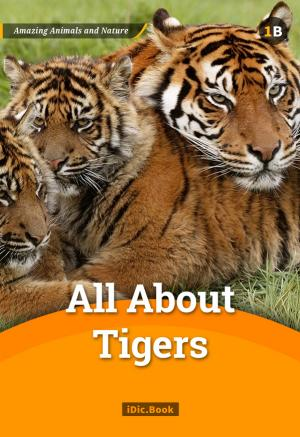 Amazing Animals and Nature 1B
