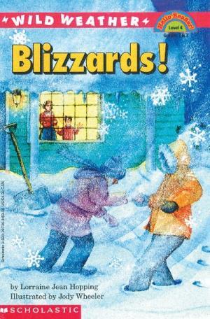 Wild Weather Blizzards!
