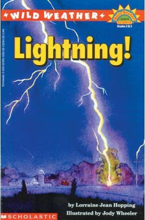 Wild Weather Lightning!