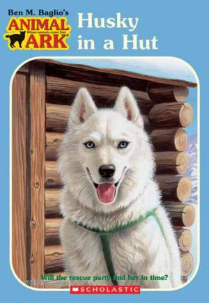 Husky in Hut