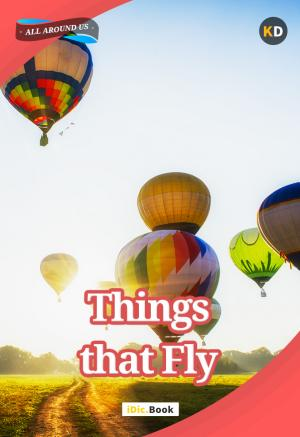 Things that Fly