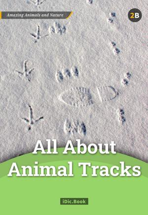 All About Animal Tracks