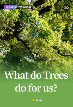 What do Trees do for Us?