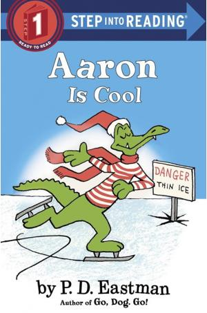Aaron is Cool