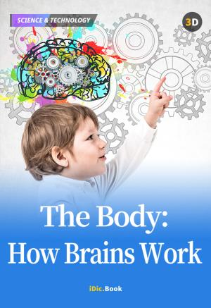 The Body: How Brains Work
