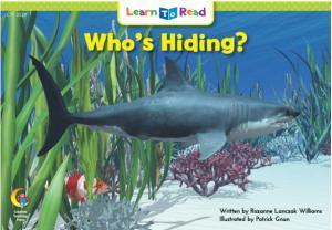 Who\'s Hiding?