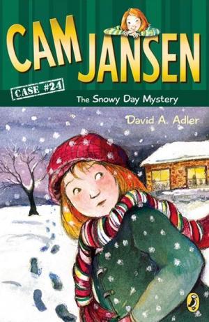 Cam Jansen The Snowy Day Mystery