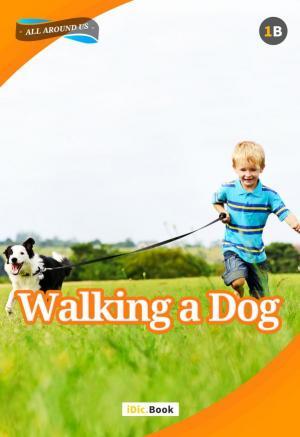 Walking a Dog