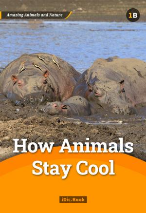 How Animals Stay Cool