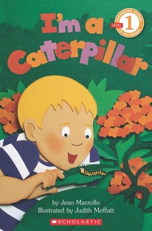 I\'m a Caterpillar