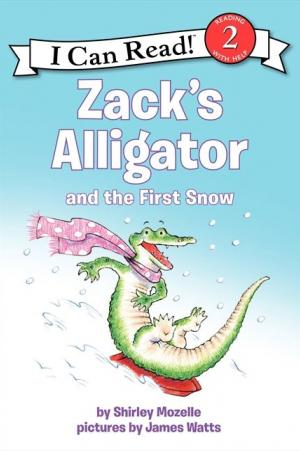 Zack\'s Alligator and the First Snow